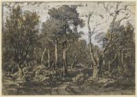 Сломаный дуб в лесу Фонтенбло