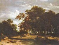 Большой лес