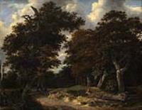 Дорога через дубовый лес