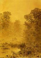 Болото в лесу. Туман