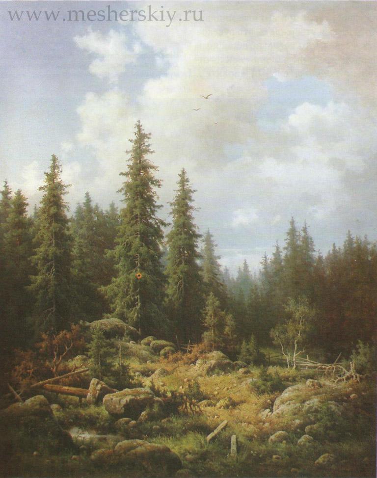 Пейзаж с елями