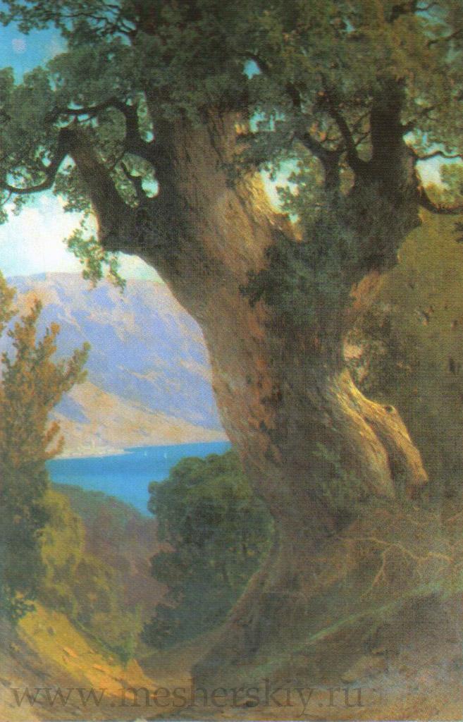 Дерево над обрывом