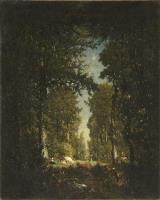 Аллея между деревьями, лес Айл Адам