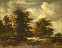 Дорога, ведущая в лес