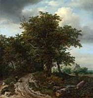 Дорога вдоль деревьев, ведущая к домику