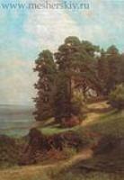 Обрывистый берег.Сосны.1880-е