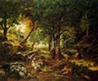 Лесной пейзаж, солнце